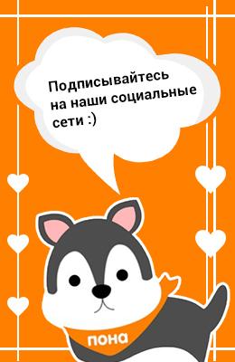 Соцсети. Владимир