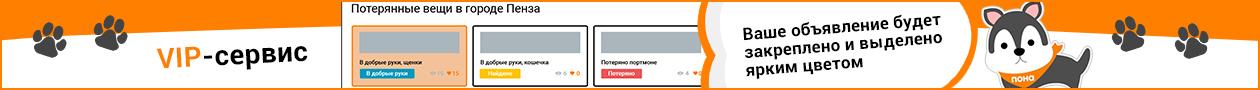 Нижний Новгород вип