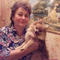 Пропала собака, окрас бежевый