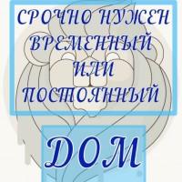 #save_life #нужна_помощь_sl